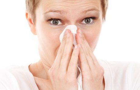 איך לעבור את האלרגיה בשלום