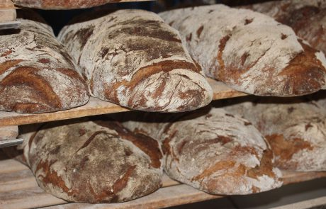 האם לחם כוסמין הכי בריא?